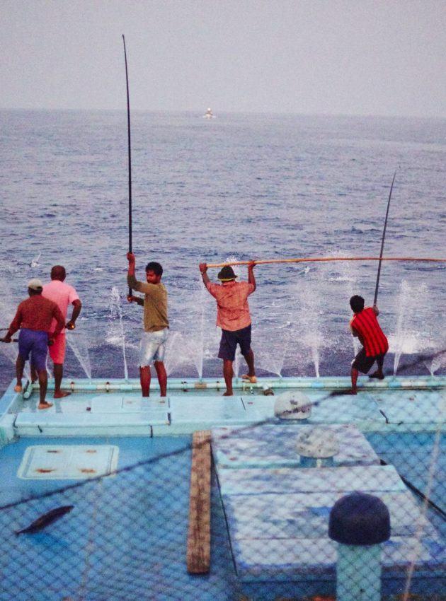 hengelgevangen tonijn - www.fish-tales.com