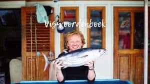 Viswoordenboek - www.fish-tales.com